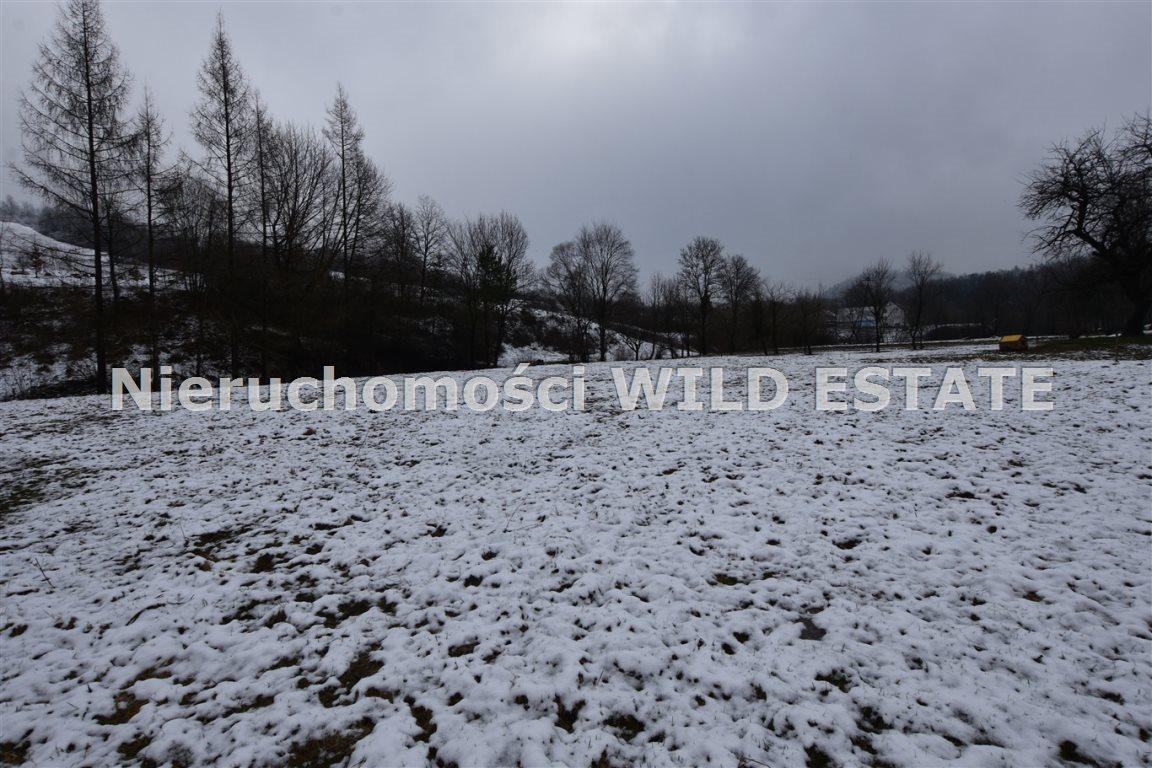 Działka rolna na sprzedaż Olszanica, Paszowa  4376m2 Foto 3