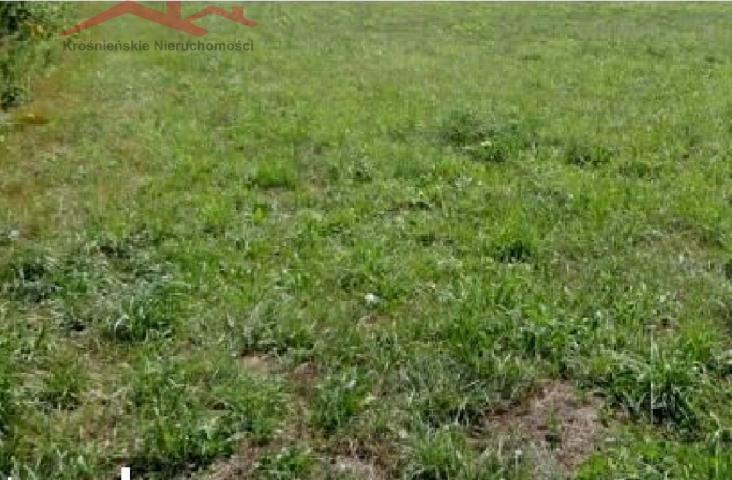 Działka rolna na sprzedaż Barycz  5600m2 Foto 1