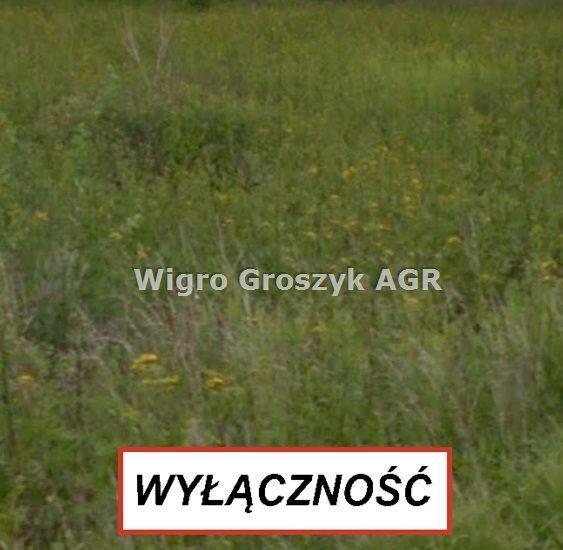 Działka rolna na sprzedaż Sowia Wola  6500m2 Foto 1