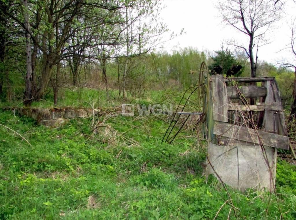 Działka inwestycyjna na sprzedaż Nowy Borek, Nowy Borek, Nowy Borek  5019m2 Foto 7