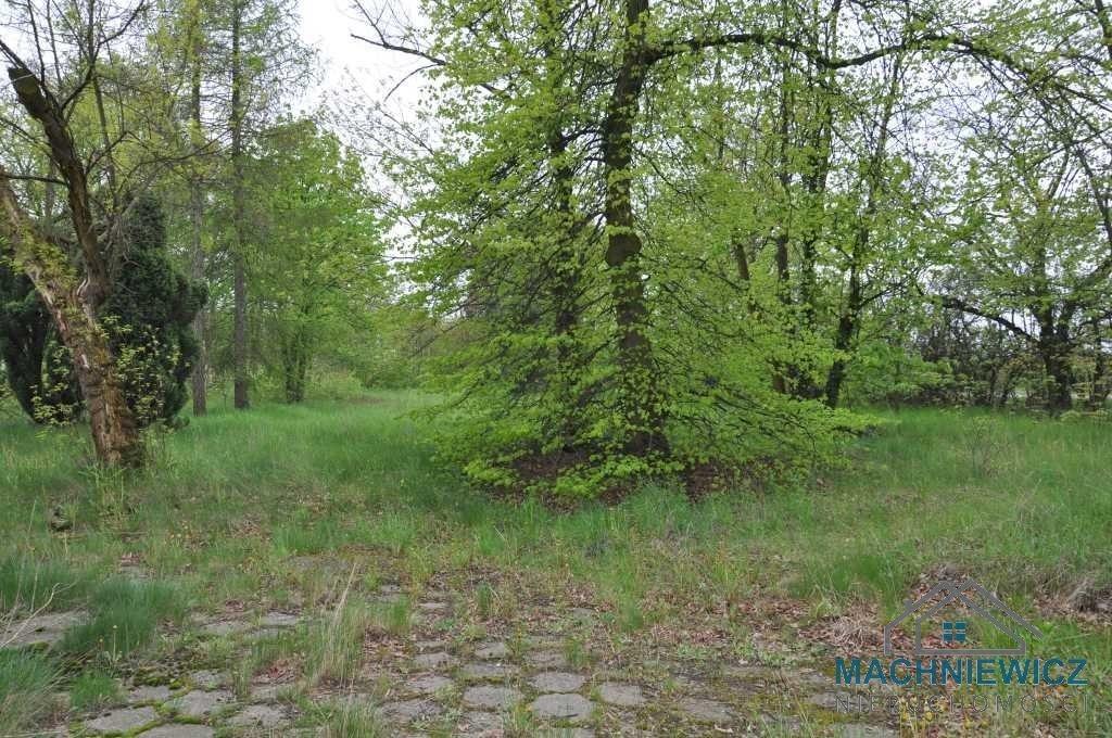 Lokal użytkowy na sprzedaż Bratoszewice  5612m2 Foto 6