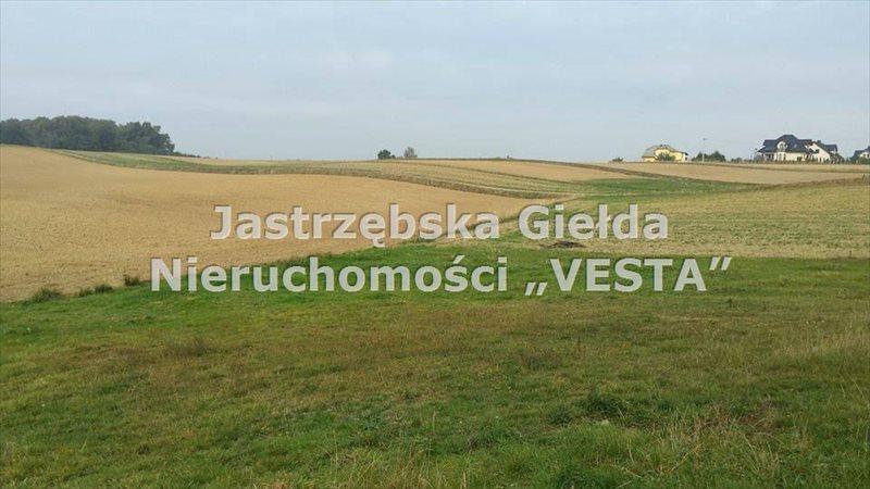 Działka inna na sprzedaż Jastrzębie-Zdrój, Bzie Zameckie  1200m2 Foto 1