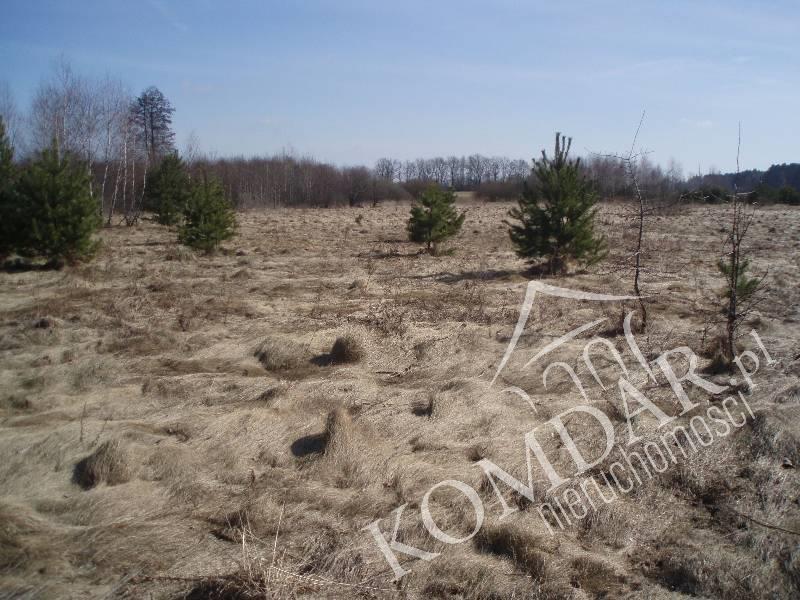 Działka rolna na sprzedaż Pokrzywnica  49500m2 Foto 1