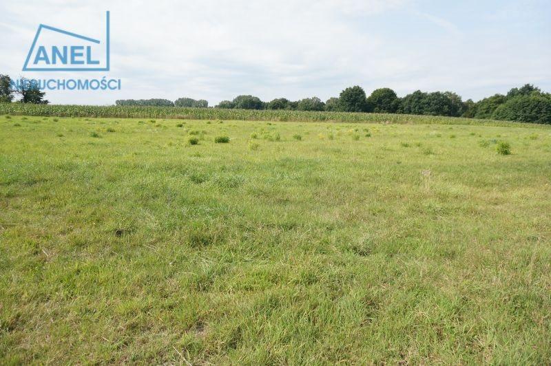 Działka rolna na sprzedaż Mikołów, Paniowy  1086m2 Foto 4