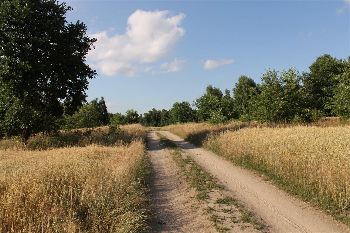 Działka rolna na sprzedaż Łagiewniki Nowe  9500m2 Foto 4