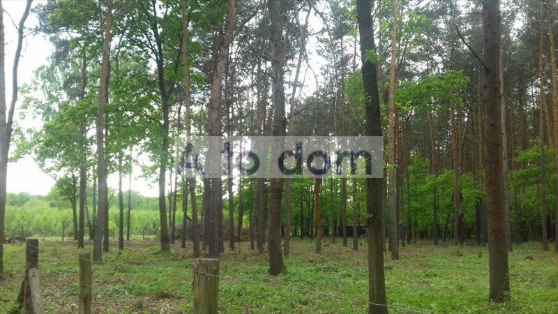 Działka rolna na sprzedaż Kobyłka  8296m2 Foto 2