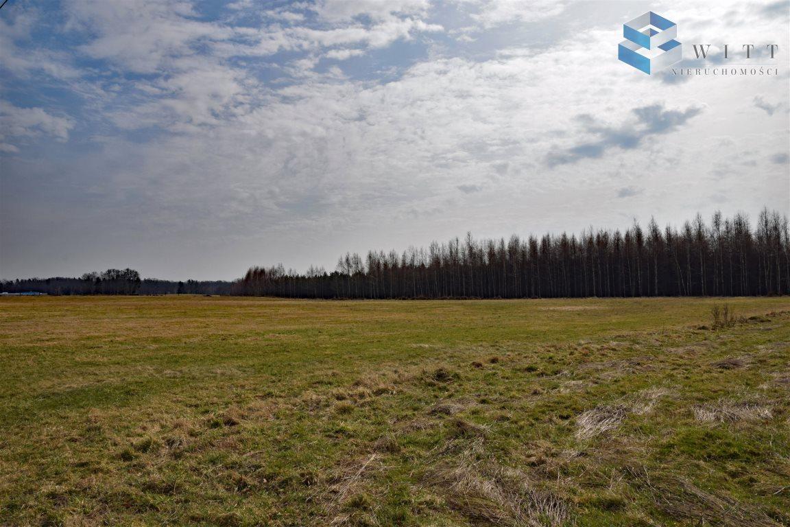 Działka rolna na sprzedaż Morąg, Kudypy  5200m2 Foto 4