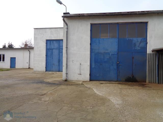 Działka inwestycyjna na sprzedaż Zgierz  3550m2 Foto 5