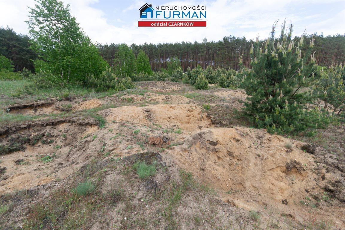 Działka rolna na sprzedaż Nowe Dwory  33639m2 Foto 8