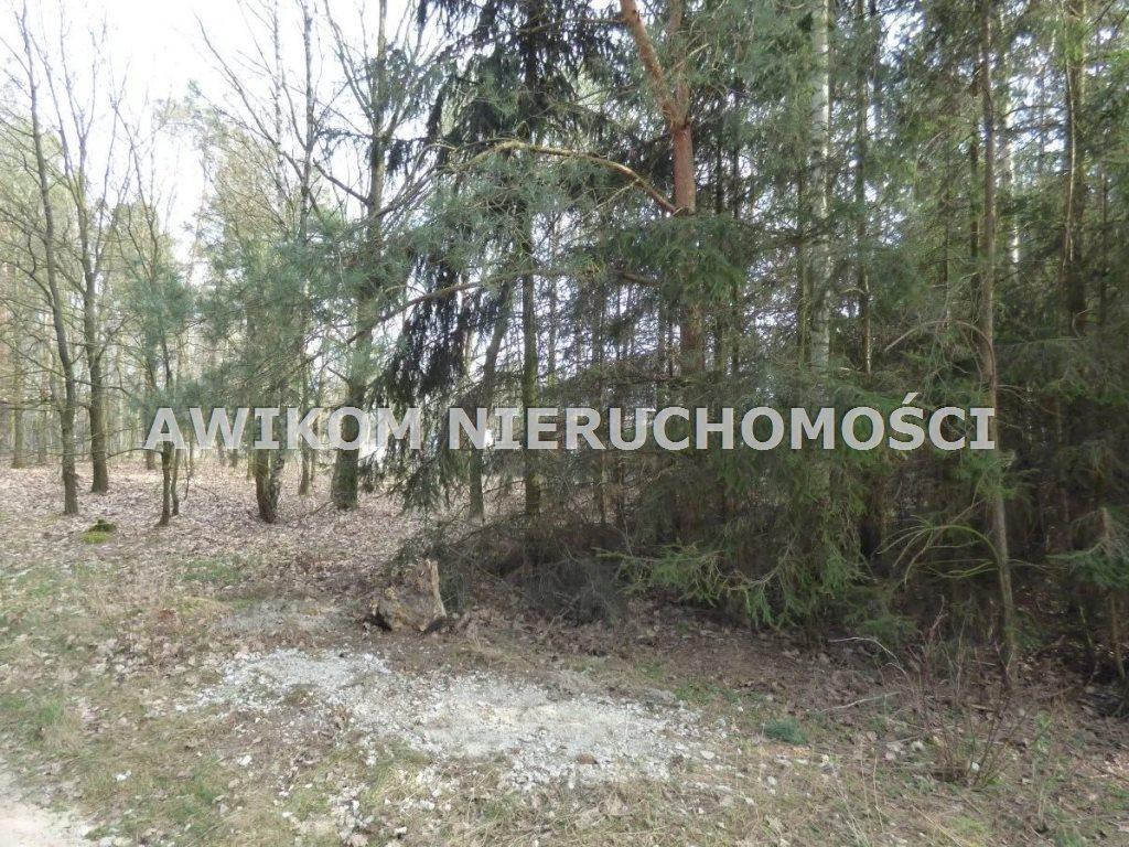 Działka budowlana na sprzedaż Radziejowice, Budy Mszczonowskie  1085m2 Foto 3