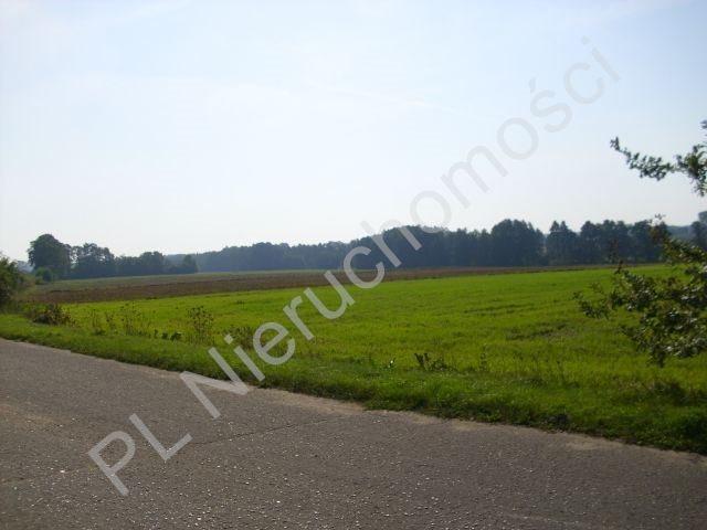 Działka rolna na sprzedaż Mszczonów  18500m2 Foto 5