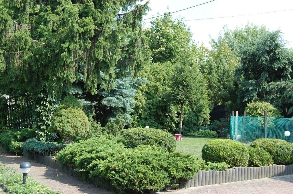 Dom na wynajem Aleksandrów Łódzki  120m2 Foto 2