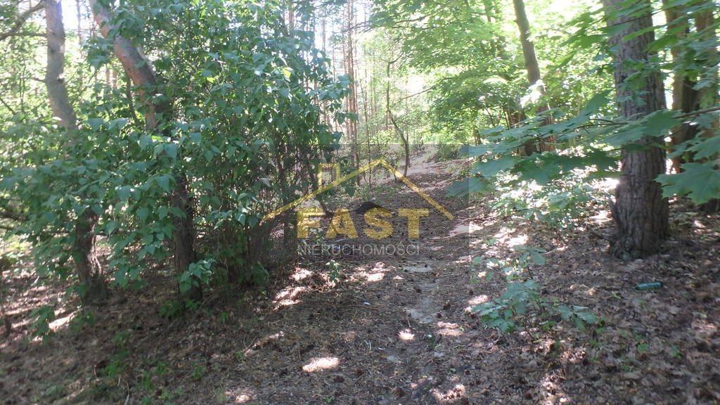 Działka leśna na sprzedaż Otwock  1262m2 Foto 6