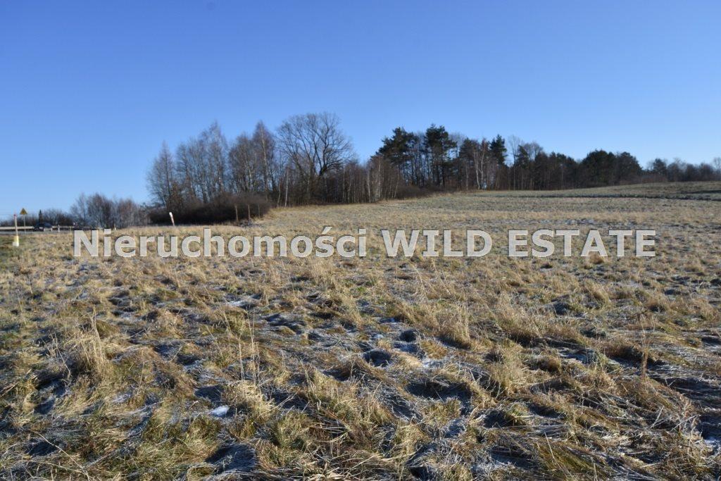 Działka rolna na sprzedaż LESKO, LESKO  8206m2 Foto 2
