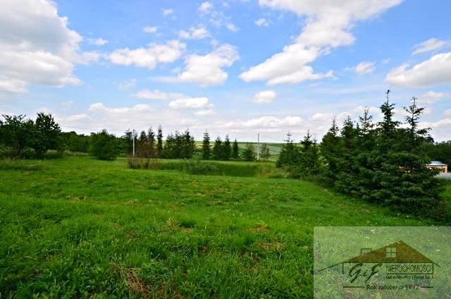 Lokal użytkowy na sprzedaż Maćkowice  488m2 Foto 12