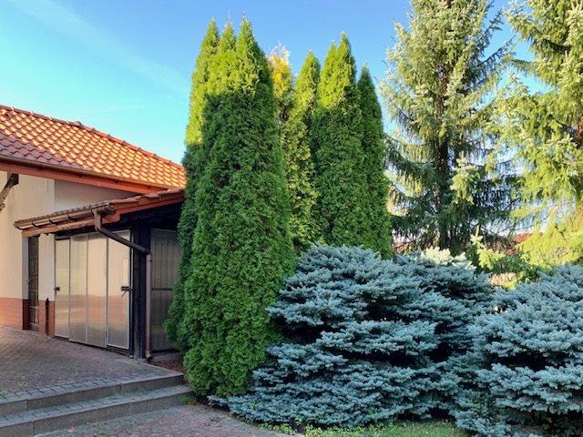 Dom na sprzedaż Bogucin Mały, Bogucin Mały  238m2 Foto 9