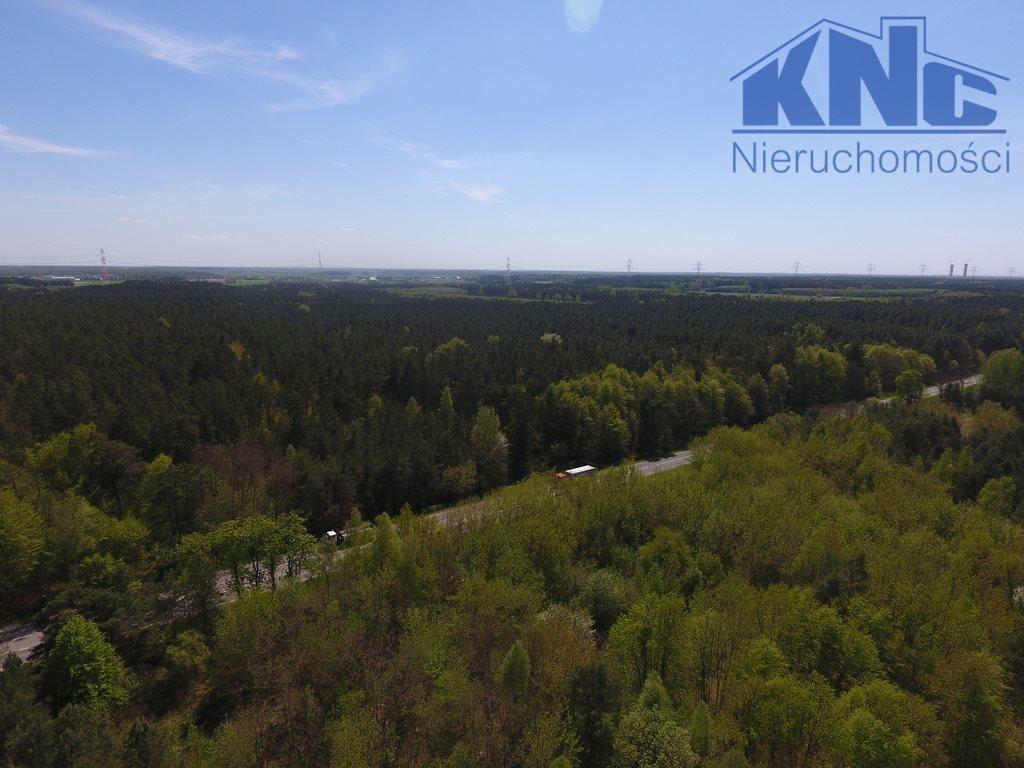 Działka leśna na sprzedaż Laskowiec  2700m2 Foto 2