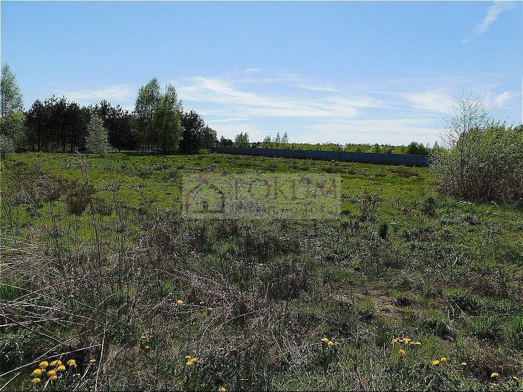 Działka rolna na sprzedaż Małęczyn  1500m2 Foto 1