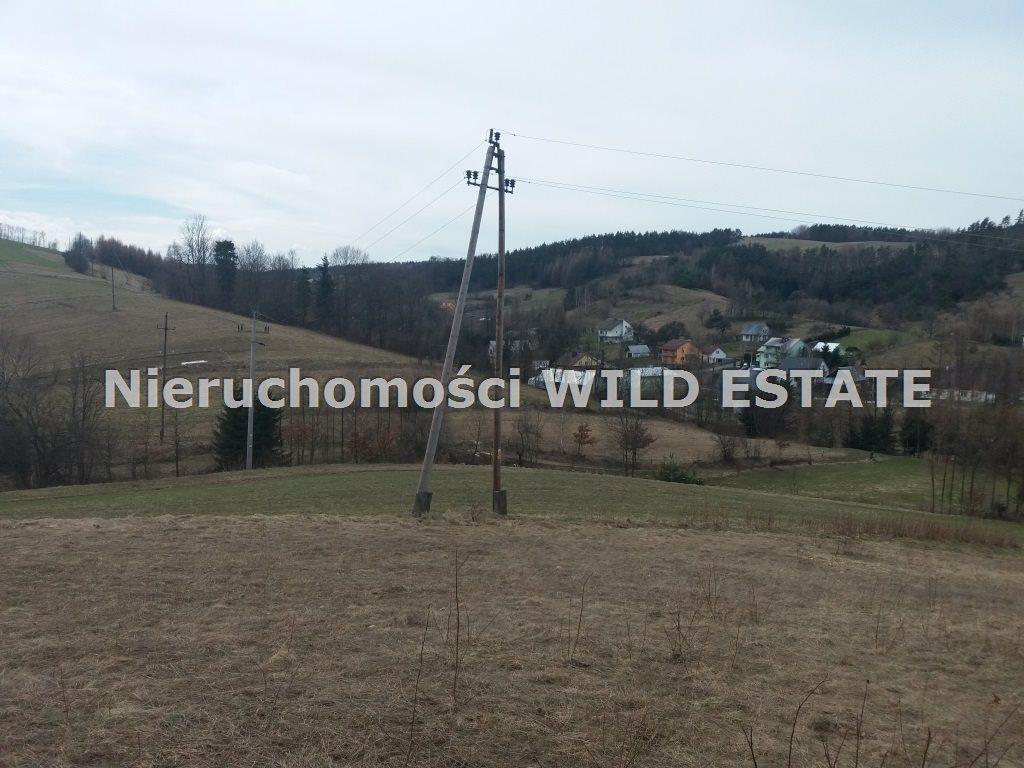 Działka rolna na sprzedaż Solina, Wola Matiaszowa  14500m2 Foto 4
