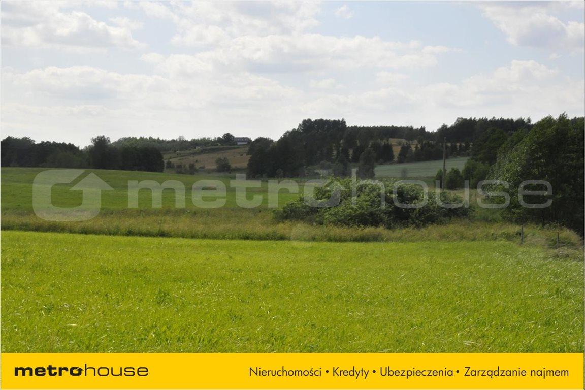 Działka rolna na sprzedaż Blanki, Lidzbark Warmiński  10921m2 Foto 4