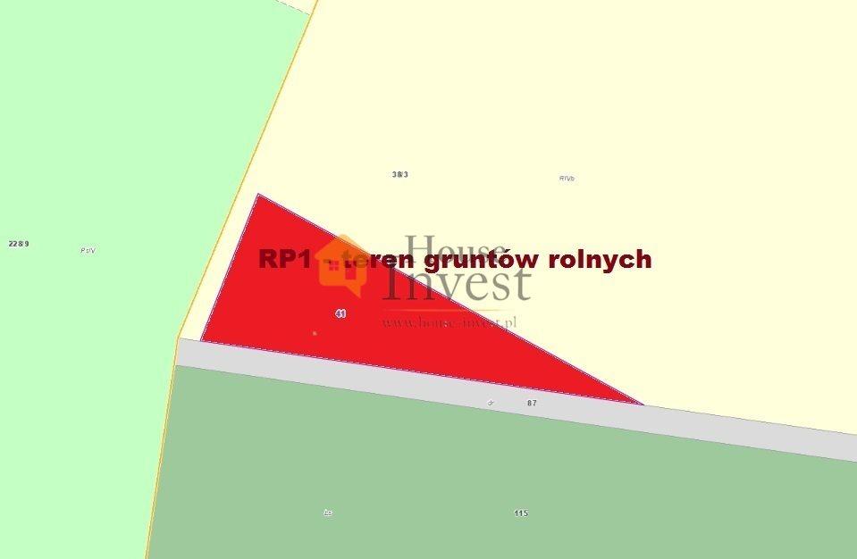 Działka rolna na sprzedaż Pietrzykowice  1000m2 Foto 2