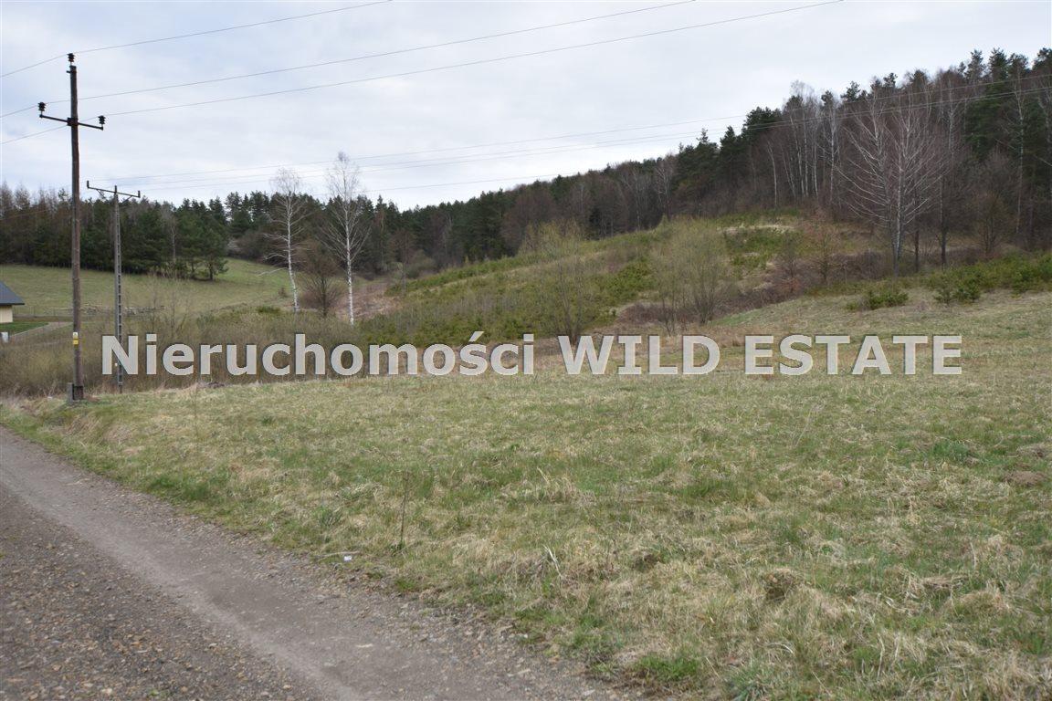 Działka inna na sprzedaż Solina, Berezka  4714m2 Foto 5