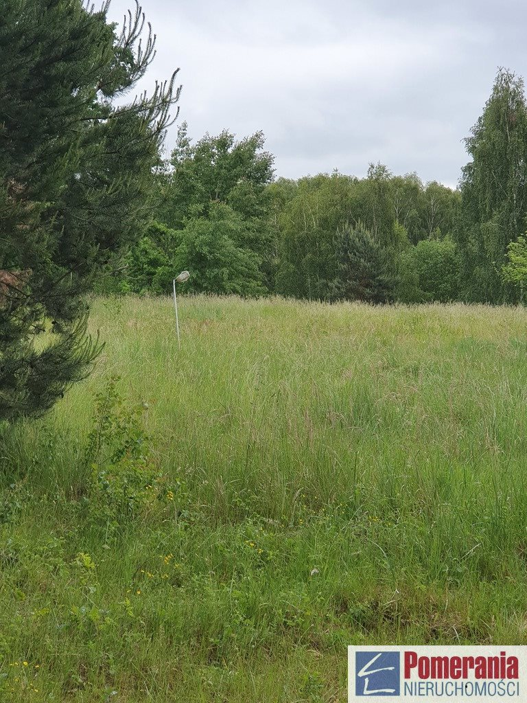 Działka rolna na sprzedaż Szczecin, Śmierdnica  3271m2 Foto 6