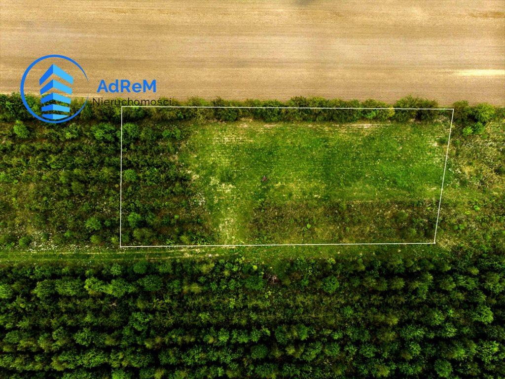 Działka rolna na sprzedaż Baciuty  3008m2 Foto 3