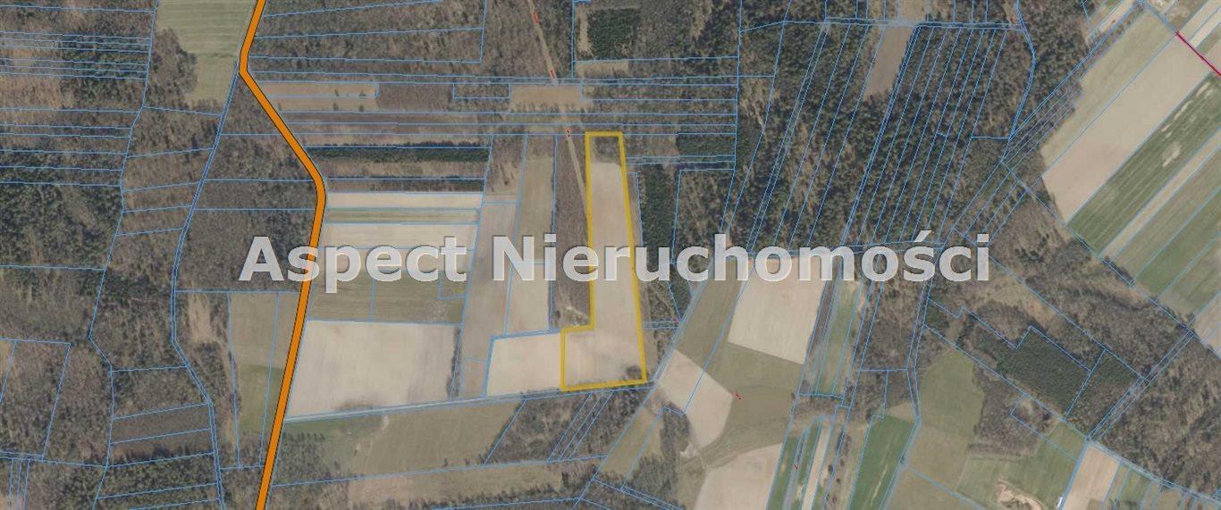 Działka rolna na sprzedaż TUROŚŃ KOŚCIELNA, CZACZKI WIELKIE  39500m2 Foto 2