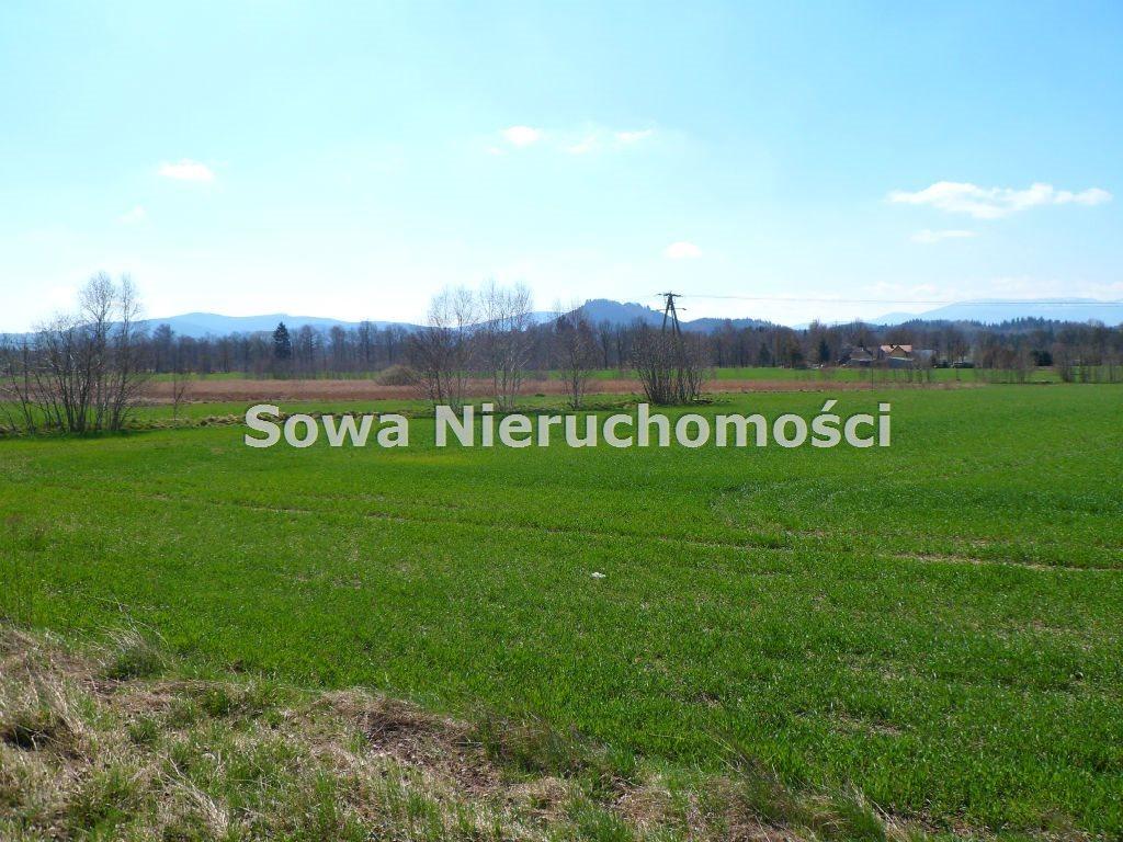 Działka inwestycyjna na sprzedaż Jelenia Góra, Maciejowa  22000m2 Foto 2