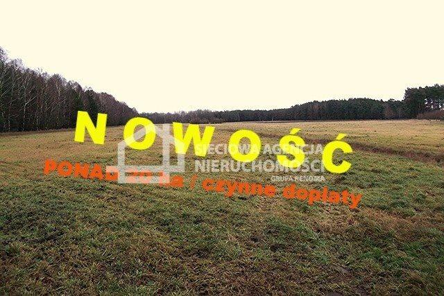 Działka leśna na sprzedaż Strzeczona  206330m2 Foto 1