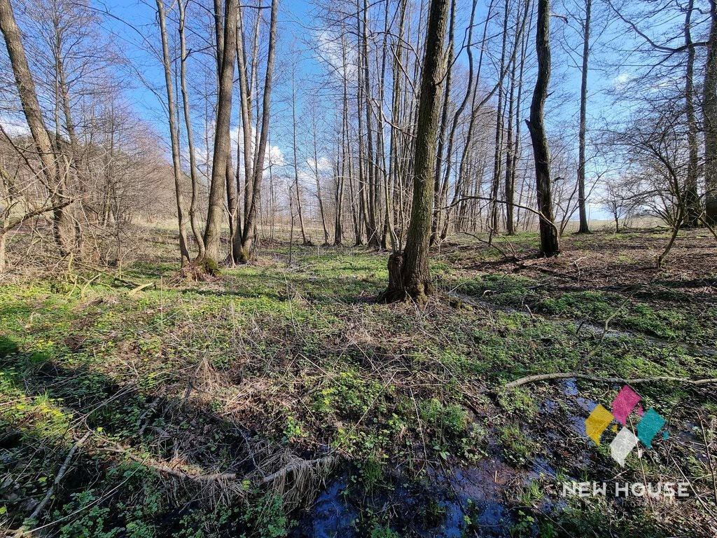Działka rolna na sprzedaż Miłogórze  19700m2 Foto 8