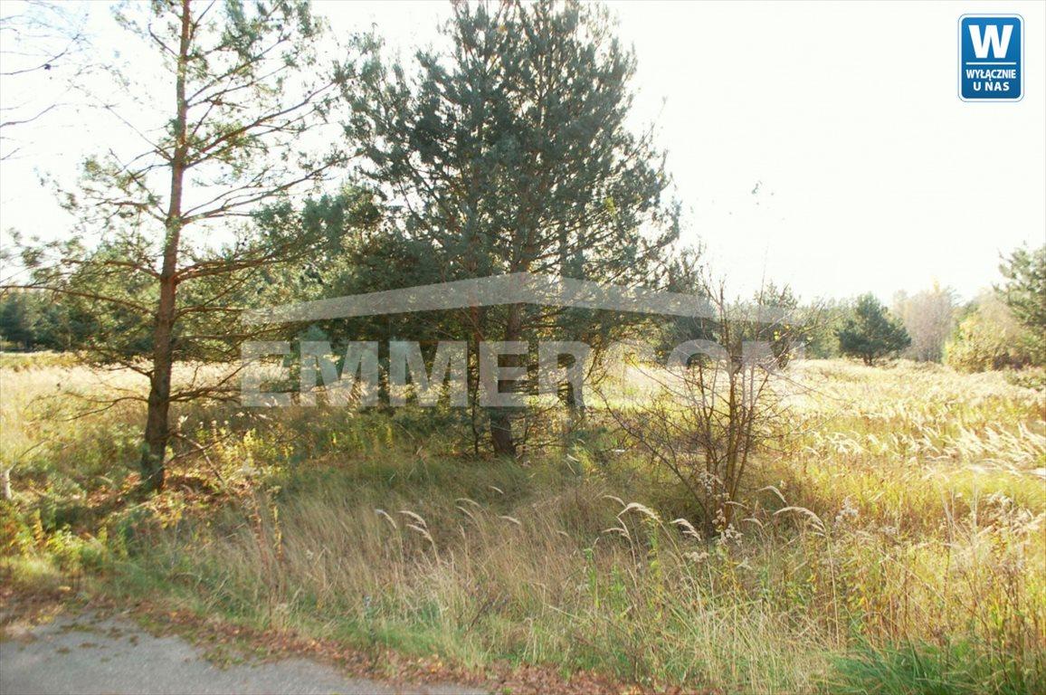Działka siedliskowa na sprzedaż Łomna, Łomna  10798m2 Foto 4