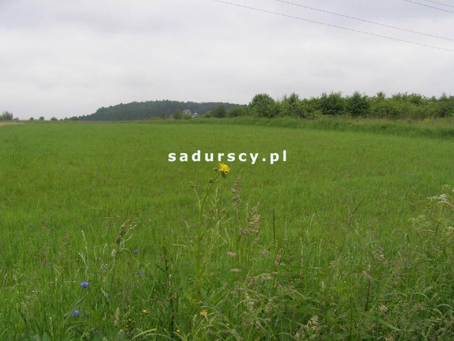 Działka rolna na sprzedaż Kraków, Podgórze, Barycka  5900m2 Foto 4