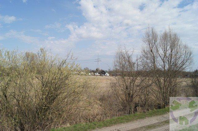 Działka rolna na sprzedaż Gdańsk, Olszynka, Olszyńska  11526m2 Foto 6
