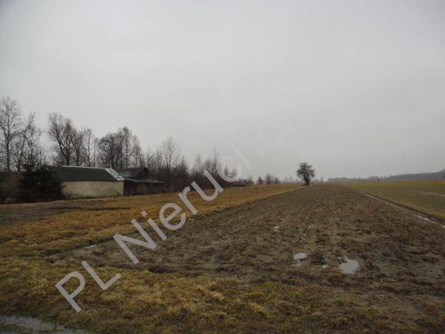 Działka rolna na sprzedaż Tyborów  1000m2 Foto 2