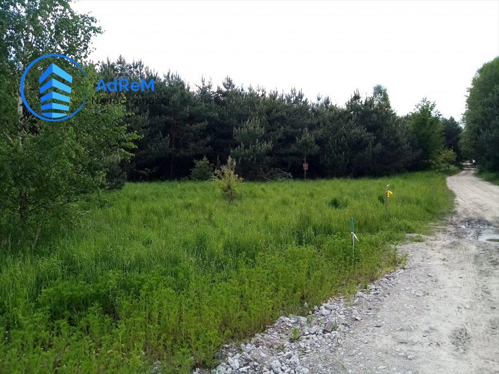 Działka rolna na sprzedaż Iwanówka  3000m2 Foto 2