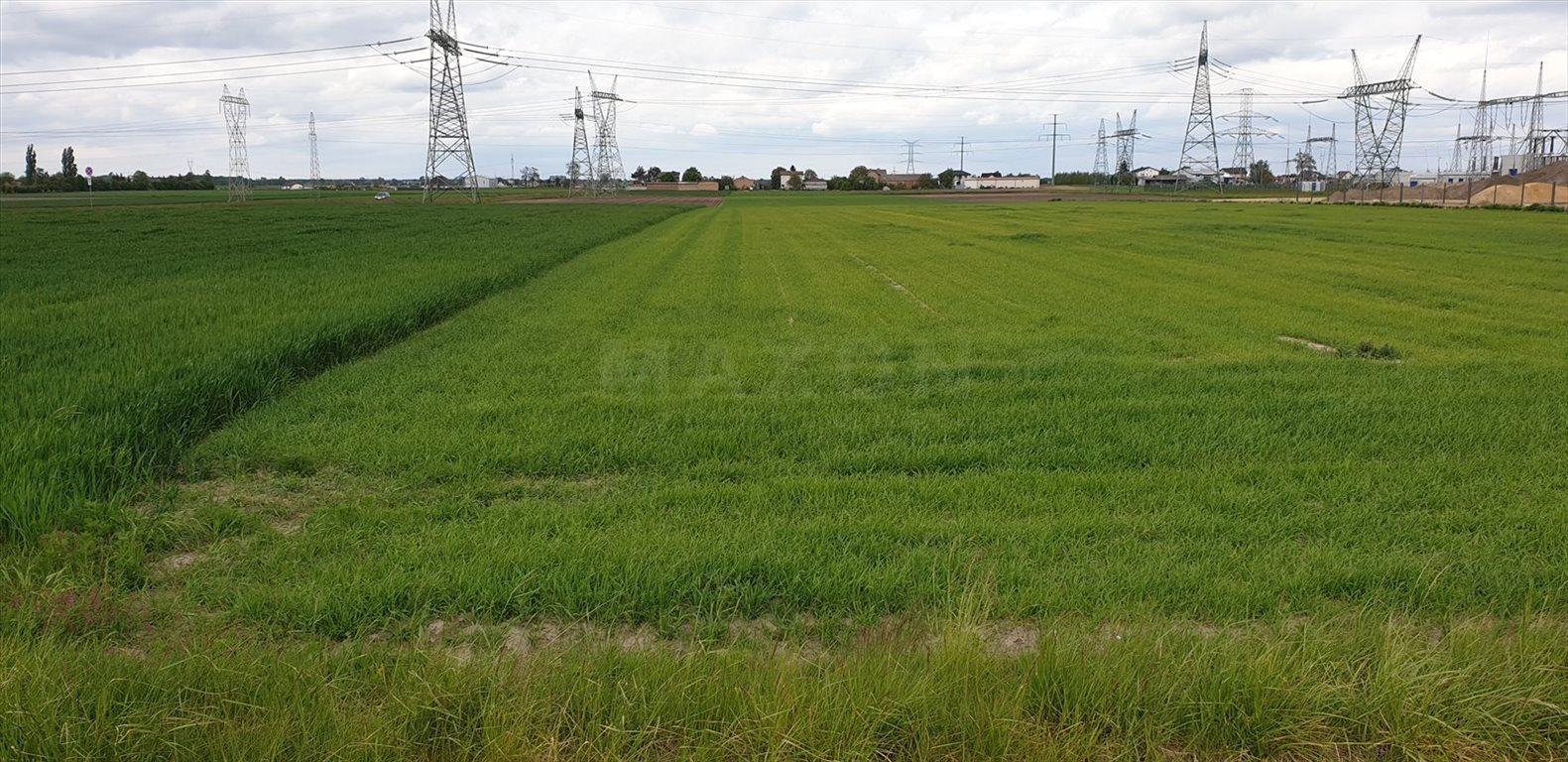 Działka przemysłowo-handlowa na sprzedaż Pogroszew  23100m2 Foto 3