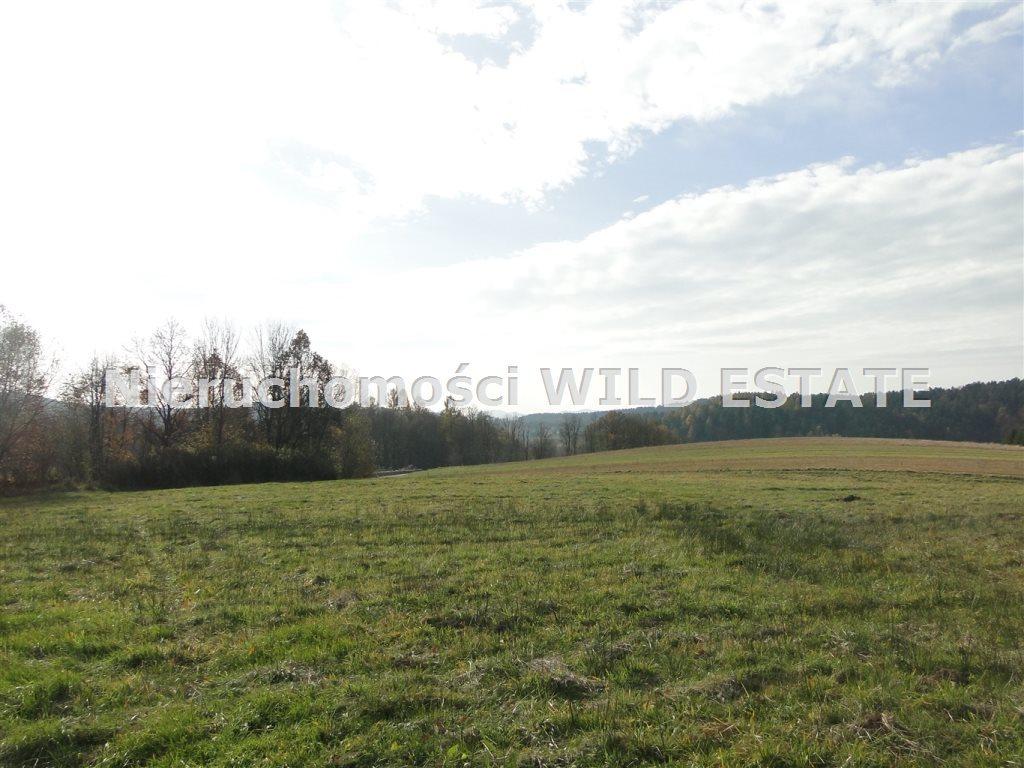 Działka rolna na sprzedaż Solina, Berezka  10398m2 Foto 1