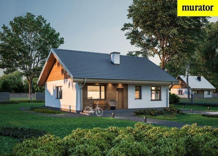 Dom na sprzedaż Puszcza Mariańska  100m2 Foto 1