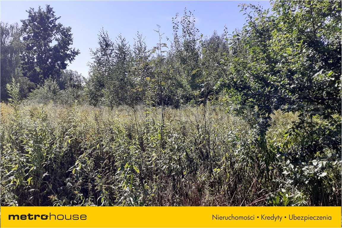 Działka rolna na sprzedaż Chraboły, Dobrzyniewo Duże  7300m2 Foto 3