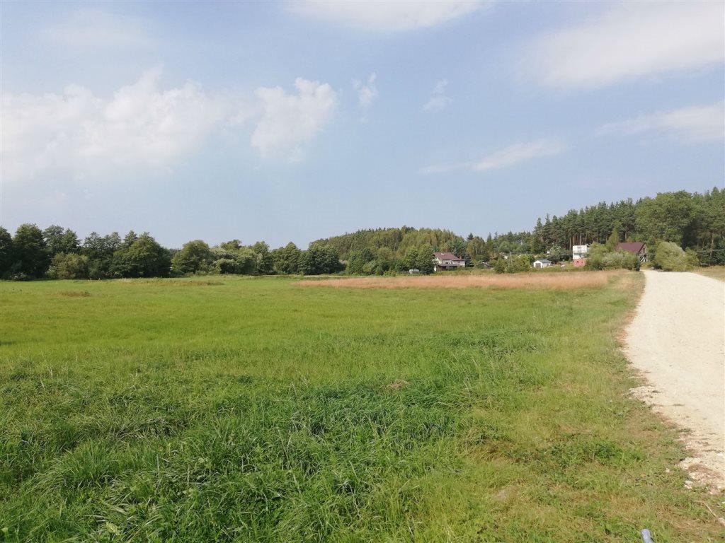 Działka rolna na sprzedaż Luzino, Zgody  12593m2 Foto 4