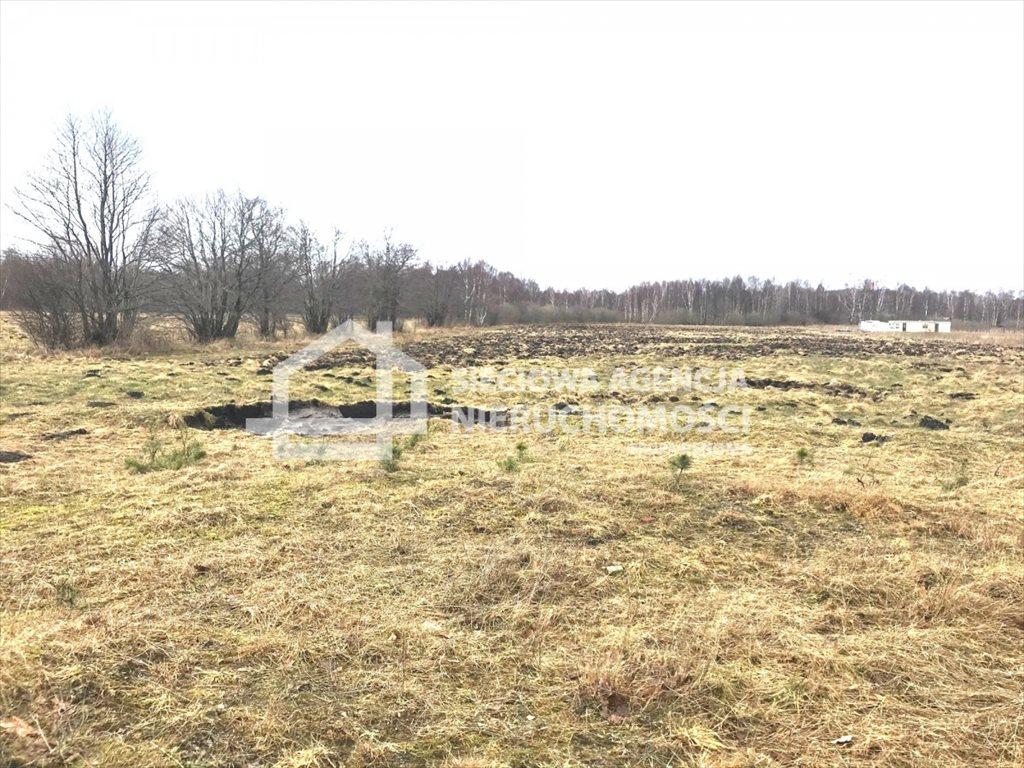 Działka rolna na sprzedaż Sasino  28300m2 Foto 4