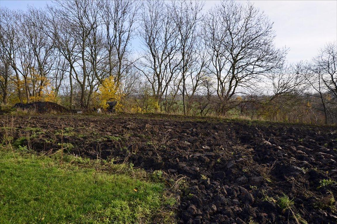 Działka budowlana na sprzedaż Malbork, Malbork  1039m2 Foto 3