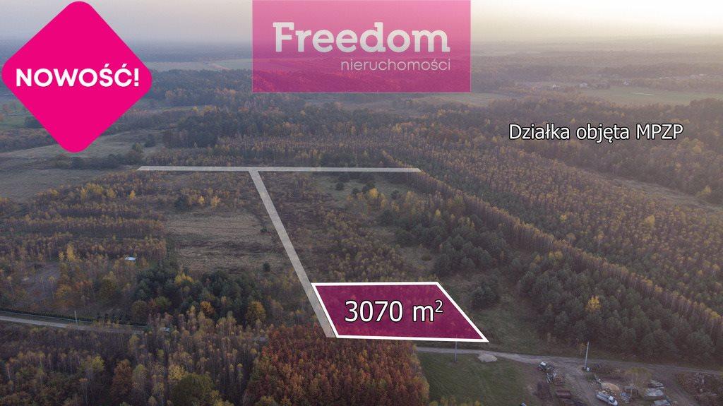 Działka budowlana na sprzedaż Wola Mokrzeska  3043m2 Foto 4