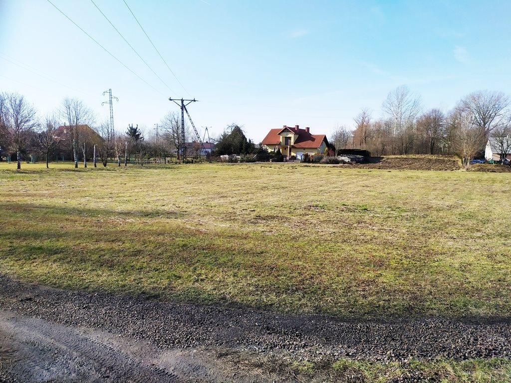 Działka budowlana na sprzedaż Głuchów  2100m2 Foto 2
