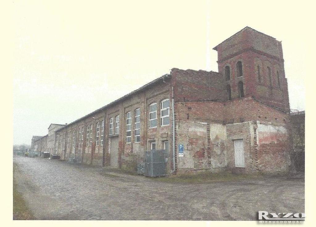 Magazyn na wynajem Niemcy, Locknitz, Locknitz  3800m2 Foto 4