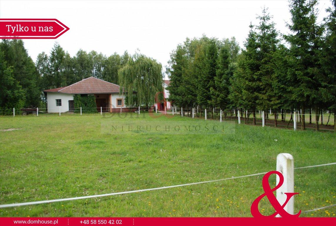 Lokal użytkowy na sprzedaż Mirowo Duże  420m2 Foto 11