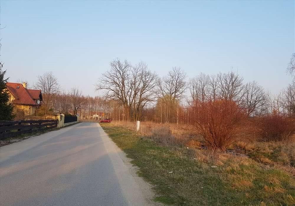Działka przemysłowo-handlowa na sprzedaż Stara Wieś  10000m2 Foto 4