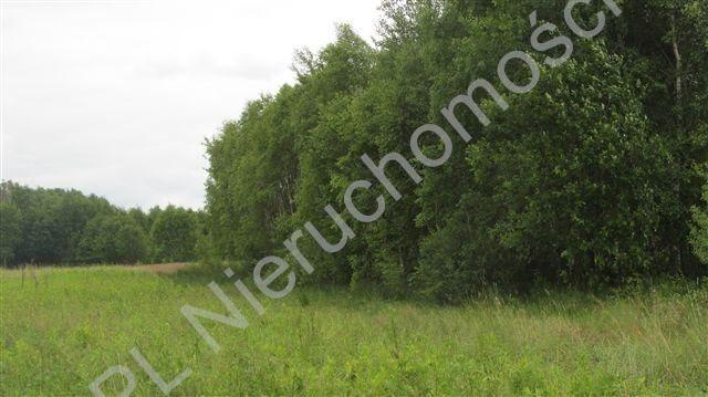 Działka budowlana na sprzedaż Olesin  1787m2 Foto 4
